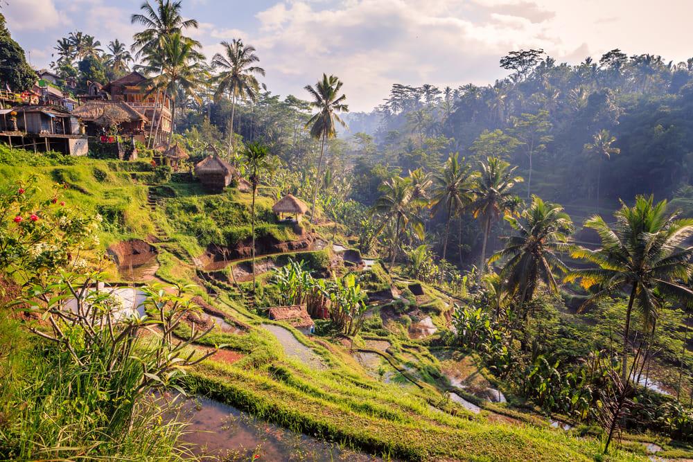 bali wyspa wioska