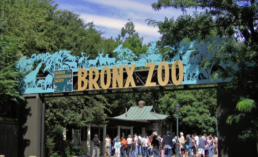 bonx zoo