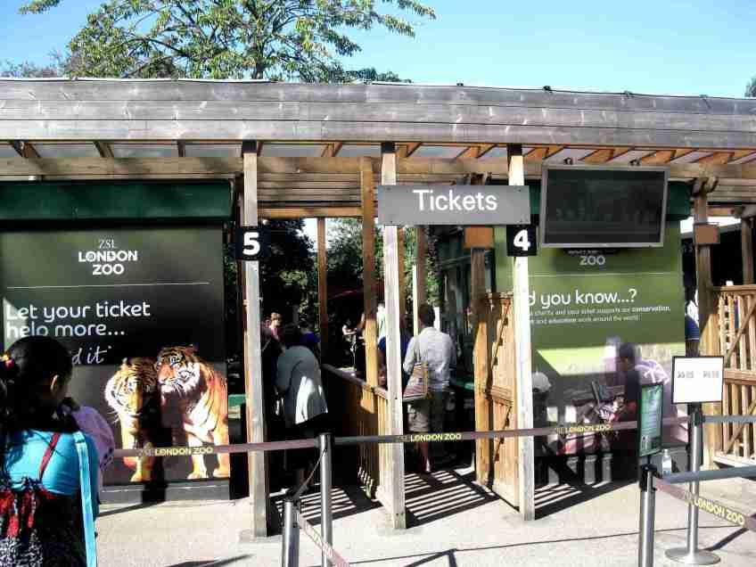 zoo w londynie